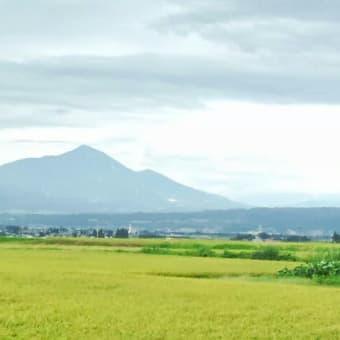 9月初旬の会津盆地から磐梯山を仰ぐ 5首