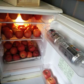 雑感・・・セカンド冷蔵庫が