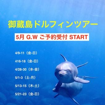 御蔵島ドルフィンスイムツアー  5月G.W. ご予約受付START