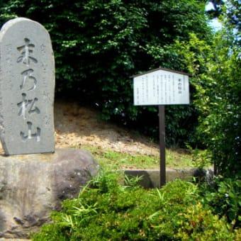 歌枕の地を訪ねて・多賀城 1 末の松山・沖の石