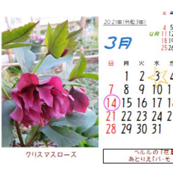2021年3月の花のカレンダー