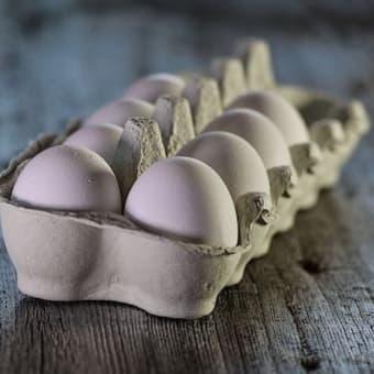 【ショック!】薬漬けで育ち、工場で塩素漬け洗浄後に出荷される鶏と卵の真実。