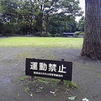 九段下 北の丸公園に行ってきました