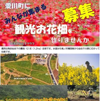 お花畑プロジェクト