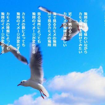 飛翔の魅力