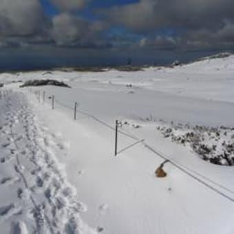 【大雪山国立公園・旭岳情報】姿見の池園地は一面の銀世界です。