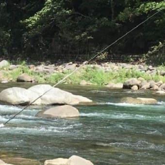 世界農業遺産「清流長良川の鮎」友釣り体験研修