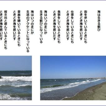 海は生きる歓び