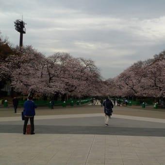 20200327 上野公園など