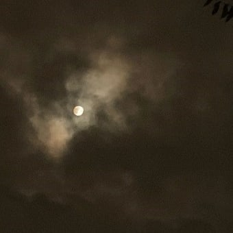 中秋の名月♪ ありモノを並べて縁側月見。