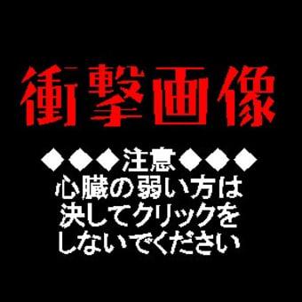 交通安全講習会 ~なぎさ公園小学校様~