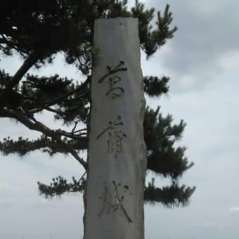 伊奈町バラ公園~菖蒲ラベンダー