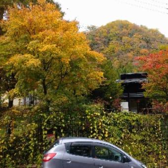 福地温泉も紅葉綺麗です