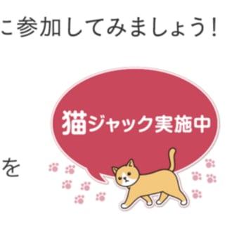 ただいま「猫の日特集」開催中です