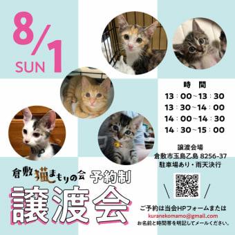 倉敷-保護猫譲渡会、8/1(日)