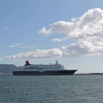 """豪華客船""""にっぽん丸""""、突然の入港..."""