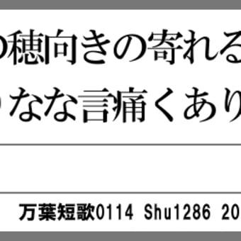 万葉短歌0114 秋の田の0098