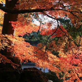 永観堂から南禅寺まで歩く・・・