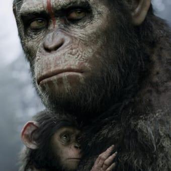 【映画】猿の惑星:新世紀(映画鑑賞記録棚卸148)…猿の気持ちで見るのが正っぽいな