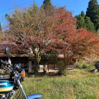 西吉野、野迫川方面へ紅葉調査へ