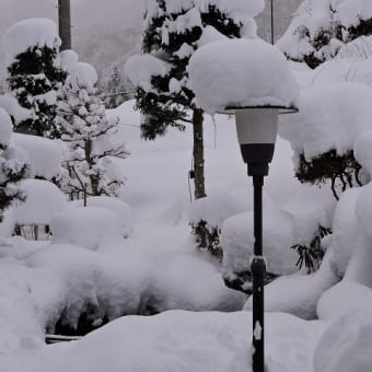 雪がすごくて…