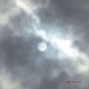 2020年05月15日(金) 曇り。 夕刻前から、雨 → 本降りへ。。