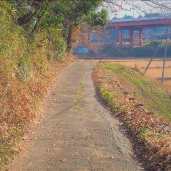 近隣散策・・・富里、山辺の道!!!