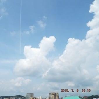 2019年07月09日(火) 晴れ(暑い?)→ 昼過ぎから、曇り。。