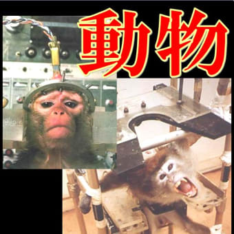【一年4800億円以上!】 医師や医療機関は製薬業界に買収され、無益で残酷な動物実験を行い国民を騙し