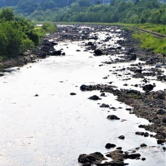 19-06-05 アユの川