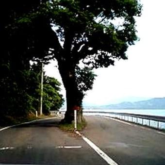 田沢湖とたつこ姫像