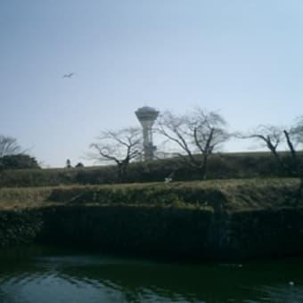 昼間の五稜郭タワー
