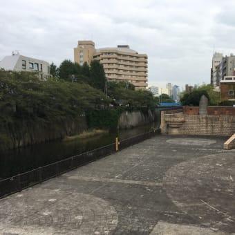 目黒川沿いの散歩
