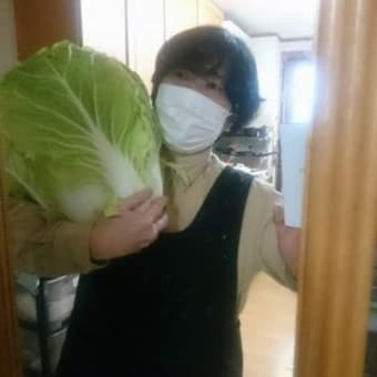 巨大白菜と消えたおにぎり