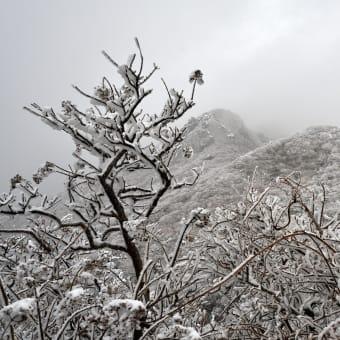 ようやく 令和初の くじゅう雪山登山