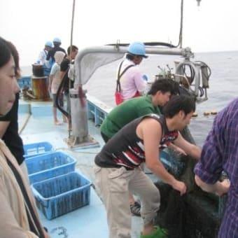 海掃除のご褒美?!定置網漁体験!驚きの生物が!!