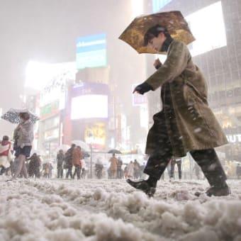 関東地方 雪降り積もり 銀世界