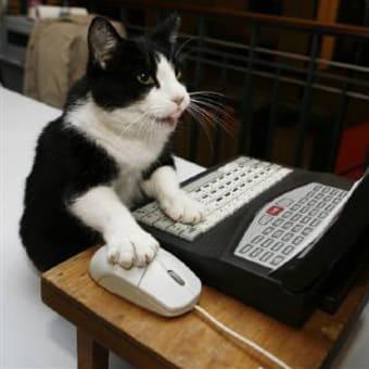 今はネコもPCを利用する時代?