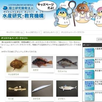 無料公開「水産研究・教育機構」海の生き物ペーパークラフト!JSフードシステム