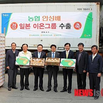 韓国産のものは梨に限らず買わない方が良い