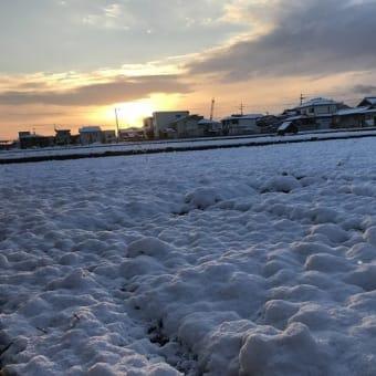 高松にも雪が積もった