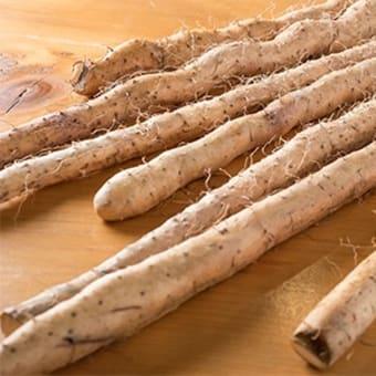 春満喫!! お出かけ 小田原~箱根  箱根 絶景ランチと自然薯料理|箱根自然薯の森 山薬