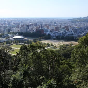 松山城でどんぐり拾い 2020-②