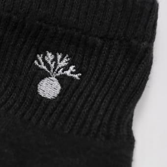 月刊ビカクシダ×OAC「ridleyi socks」を紹介します。