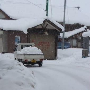 しめじとホタテのアヒージョ♪大雪の日に誕生しました