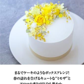 川西阪急 ヒビアプデ 「ミモザのケーキボックス」