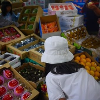 和歌山市中央卸売市場