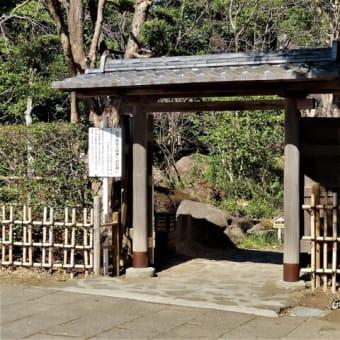 平塚総合公園・日本庭園