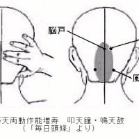 質問紙を使った耳鳴分析と鍼灸の奏功例 ver.1.1