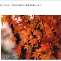秋の温泉 那須